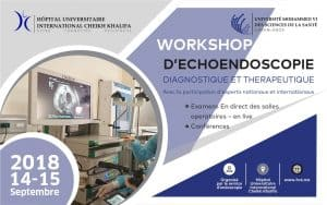 WORKSHOP D'ECHOENDOSCOPIE DIAGNOSTIQUE ET THERAPEUTIQUE