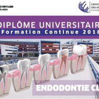 Lancement du Diplôme Universitaire en Endodontie Clinique