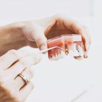 La faculté de Médecine Dentaire : Avis du concours de recrutement de Professeurs Assistants au titre de l'année 2019