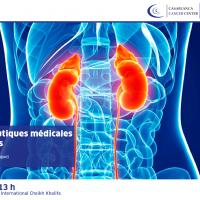 Journal club #21 : Rein et thérapeutiques médicales anti-cancéreuses